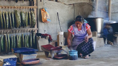 Artisan woman in Oaxaca, Mexico, preparing natural dyes from cochineal, indigo, mosses and barks in her traditional Zapotec studio. Join her for a private workshop to learn natural dyeing fabric techniques #creativevacation #vawaa  #travelmexico #oaxaca #creativity #naturalfabricdyeing #naturaldyes #slowtravel #cochineal #crafts #howtomake